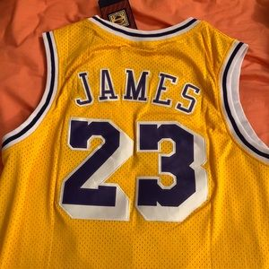 save off 2d5b5 2bc01 Lebron James Retro Los Angeles Lakers Jersey! NWT